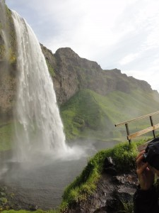 seljalandsfoss vegetation waterfall south