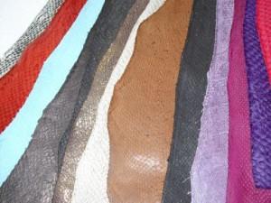 Craft: fish leather