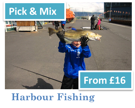 Harbour Fishing