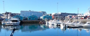 food-tour-reyk-harbour