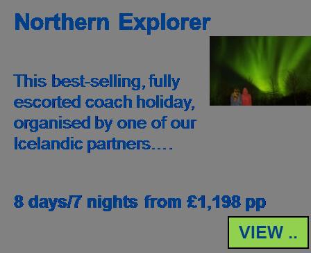 Northern Lights Explorer