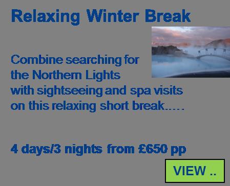 Relaxing Winter Break