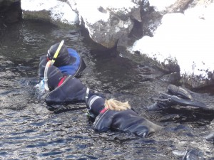 Snorkelling in Winter silfra golden circle