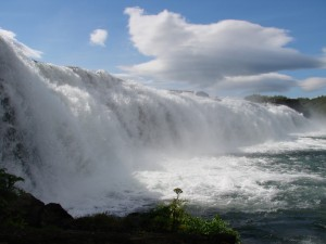 faxifoss close up